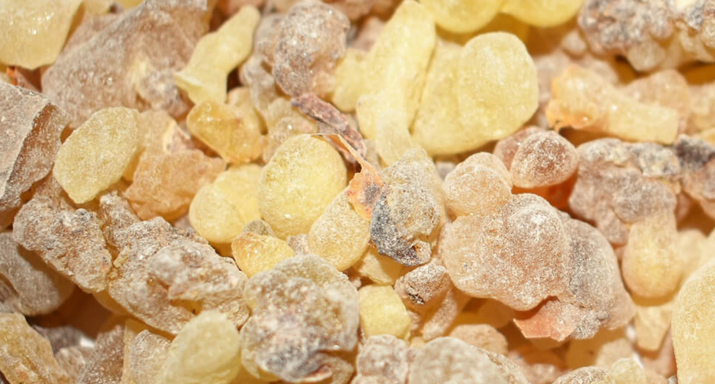 frankincense close up