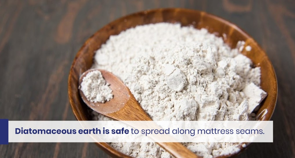 """diatomaceous earth - text: """"Diatomaceous earth is safe to spread along mattress seams."""""""