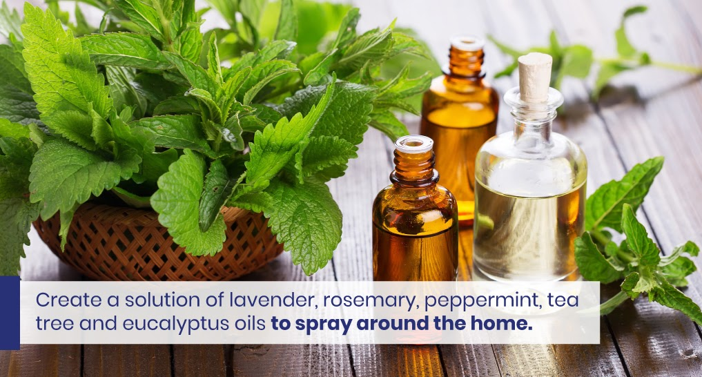 """group of essential oils - text: """"Create a solution of lavender, rosemary, peppermint, tea tree and eucalyptus oils to spray around the home."""""""