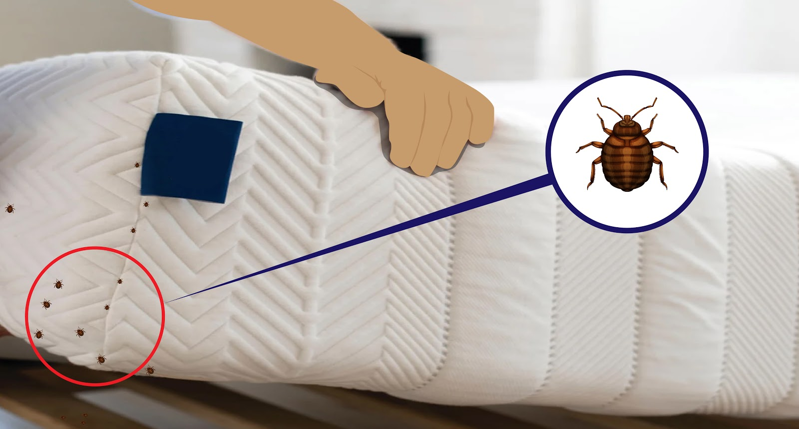 Photo a mattress (no sheets) with illustrated bed bugs