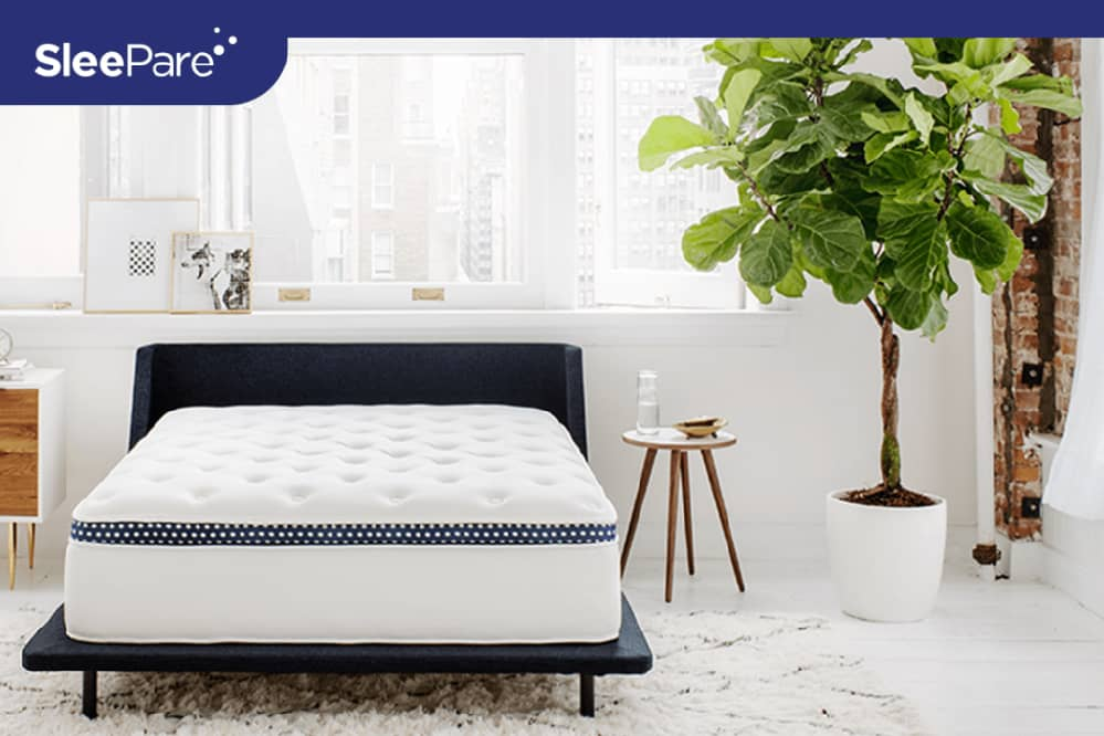 best mattress plus-size person